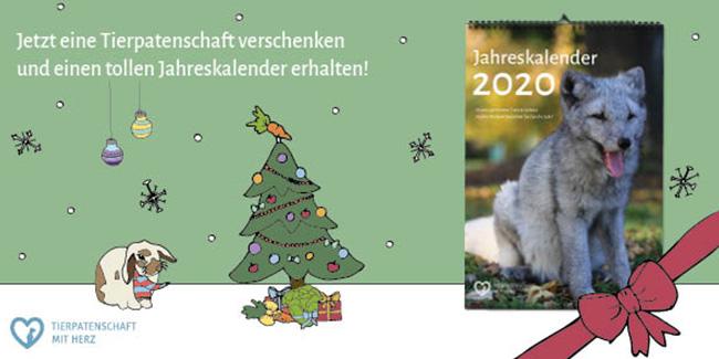Sichern Sie sich bis zum 18.12. ein tolles Weihnachtsgeschenk!