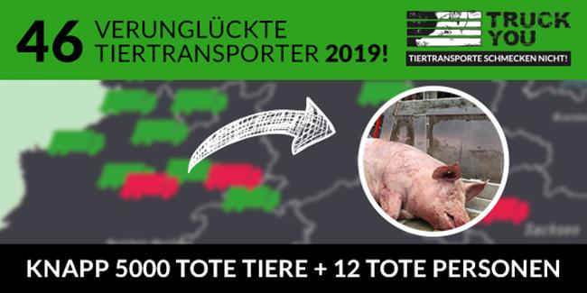 Wir fordern das Ende aller Lebendtiertransporte!