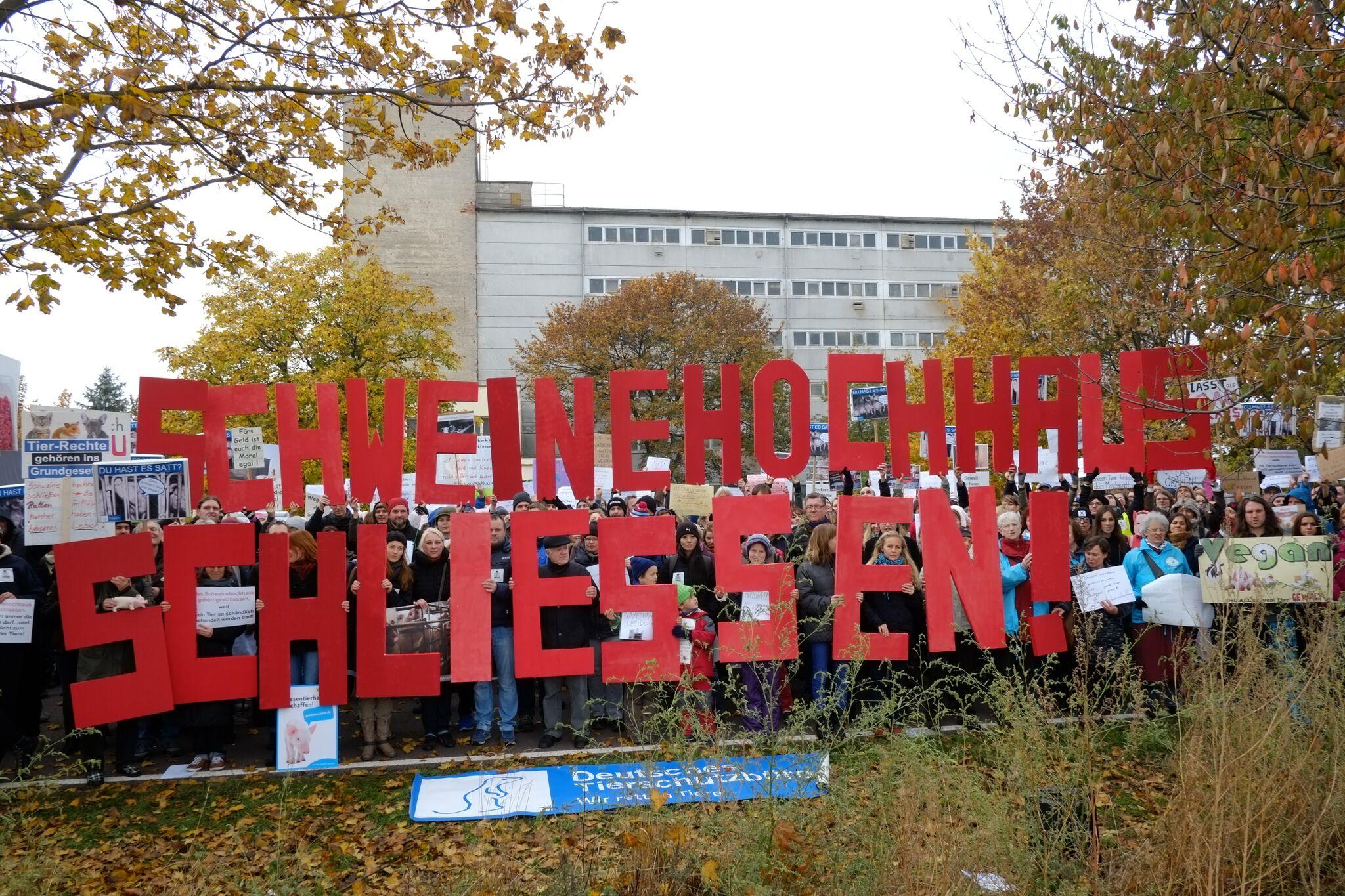 Hunderte Menschen demonstrieren vor dem Schweinehochhaus gegen Tierquälerei  in Maasdorf.