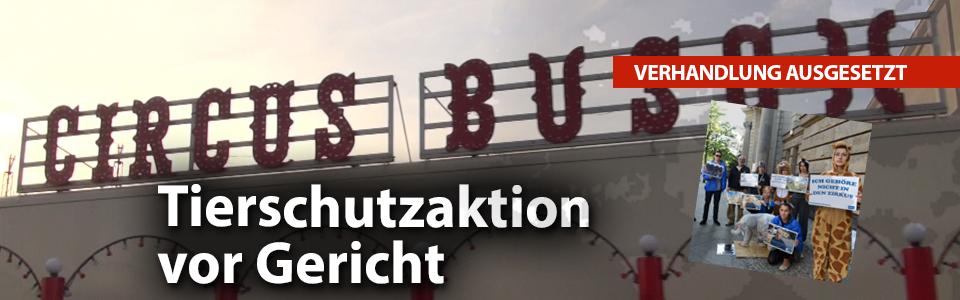 2016__bild-blogeintrag_slider_Schollini_Aktion