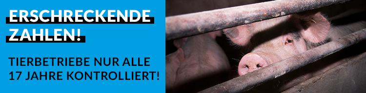 Erschreckende Zahlen der Bundesregierung zeigen: Tierbetriebe werden im Schnitt nur alle 17 Jahre kontrolliert!