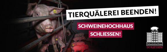 Kampagne geht weiter: Erneut Strafanzeige gegen das Schweinehochhaus erstattet
