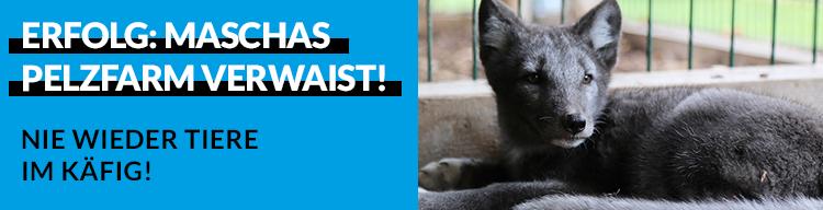 Erfolg: Hier werden nie mehr Tiere für die Pelzproduktion ausgebeutet!