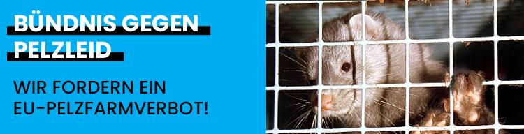 Nach SARS-CoV-2 Ausbrüchen auf europäischen Nerzfarmen: Wir fordern europäisches Pelzfarmverbot