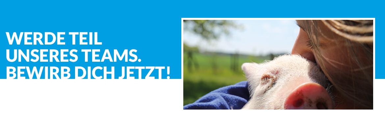 Jobs beim Tierschutzbüro — wir brauchen engagierte Menschen wie Dich!
