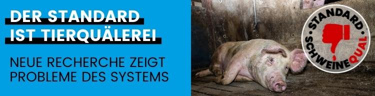 Neue Kampagne zeigt abermals Tierquälerei auf