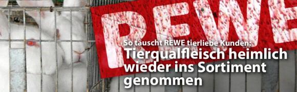 So täuscht REWE tierliebe Kunden: Tierqualfleisch medienwirksam ausgelistet und klammheimlich wieder ins Sortiment genommen
