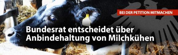 Landwirtschaftsausschuss des Bundesrats entscheidet über Anbindehaltung von Milchkühen -- Deutsches Tierschutzbüro sammelt tausende Unterschriften für ein Verbot